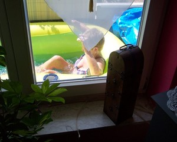 NN-Mature-Wife-Balcony-Voyeur-%40Summer-2014-27fa5ufirr.jpg